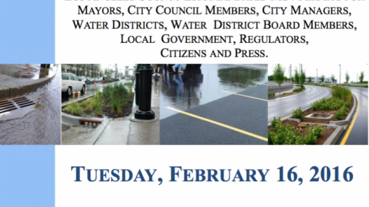 Stormwater Roundtable Flyer